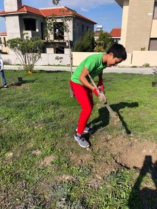 Stef Mavromichalis planting a tree